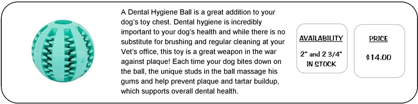 Dental Hygiene Ball